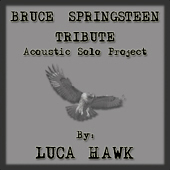 Luca Hawk -- Bruce Springsteen Tribute: Acoustic Solo Project