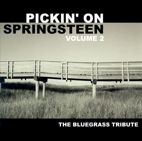 Session musicians featuring David West -- Pickin' On Springsteen Volume 2