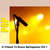 Studio Group -- A Tribute To Bruce Springsteen Vol 1